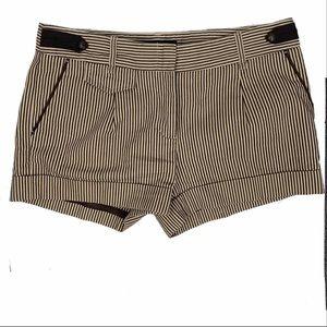 BCBGMaxAzria Brown & Beige Striped Short Shorts 6